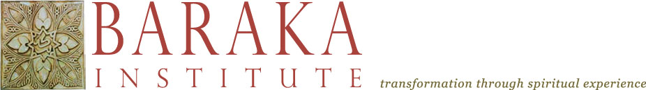 Baraka Institute Logo